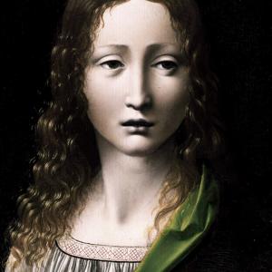 Tras las huellas de Leonardo en Madrid